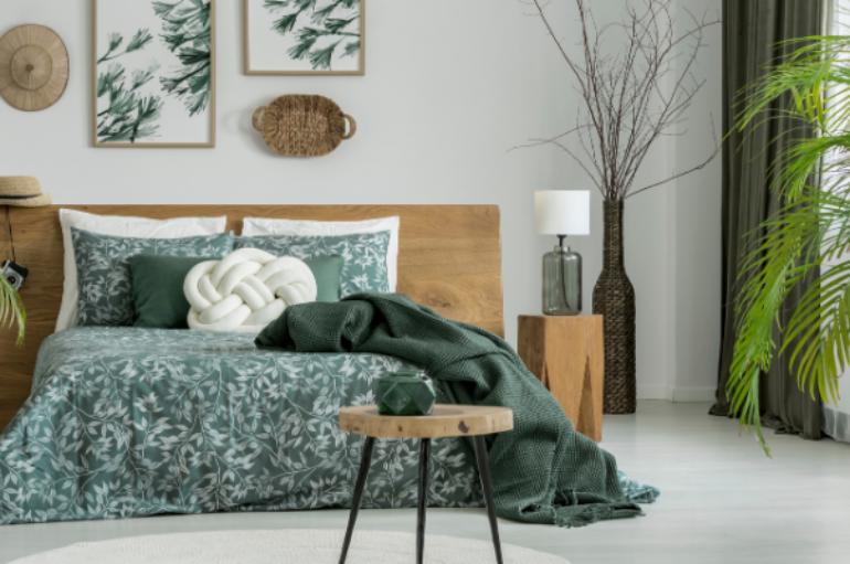 Traitement écologique des punaises de lit à Lyon et Roanne : questions et réponses