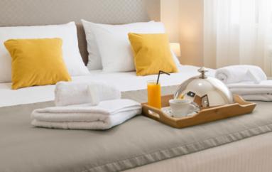 Traitement punaises de lit hôtel à Lyon : extermination lorsque votre réputation en dépend ?